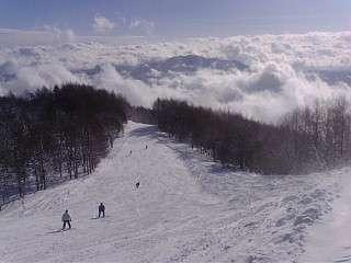杉の原スキー場権ゴンドラ山頂から。運が良ければ富士山も見えます!