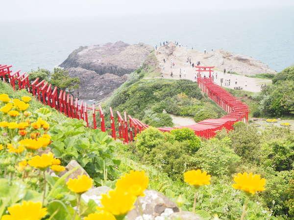 元の隅神社昨今、大人気の観光スポットです。5月の景色