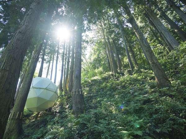 グランピング 球体テント