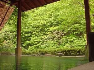 爽やかな風に誘われて・・・目にも鮮やかな新緑を臨む露天風呂(5~6月)