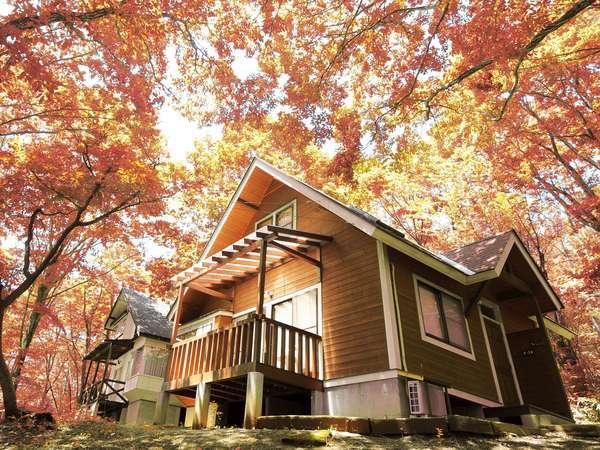 【キッチン付コテージ】赤や黄色に色付く秋★赤や茶色の色彩ワールドをお楽しみください!