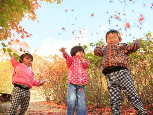 色とりどりの紅葉がきれいだね(*^_^*)