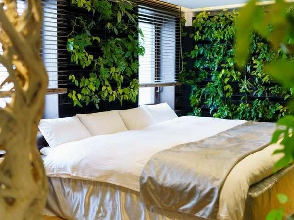 711号室/壁一面の植物と『アコウ』の木が異国の森林へ誘う。