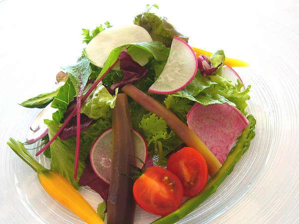 三浦半島で取れた旬の野菜をどうぞ