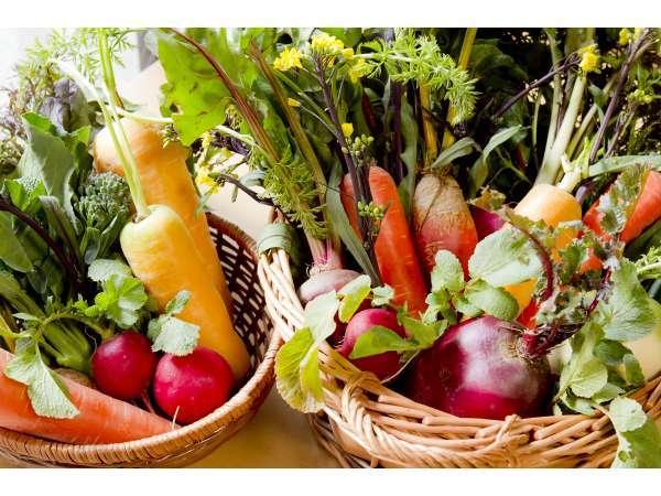 《野菜の声を聞く》大地のエネルギーで育った新鮮なこだわり野菜を、野菜の声を聞いてシェフは調理します