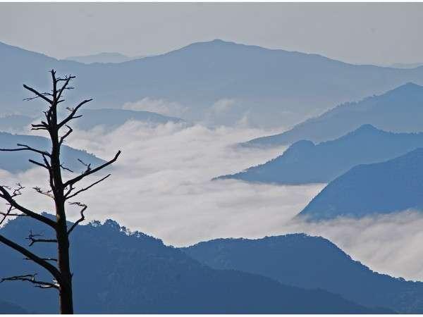 日高川・自然 雲海