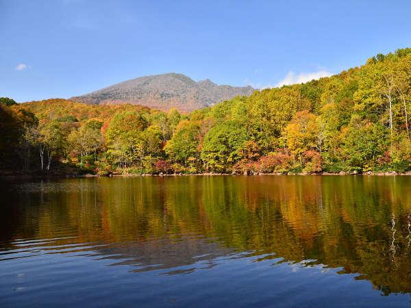 *周辺観光 / 笹ヶ峰高原の清水ヶ池 トレッキングやハイキングにぴったり!