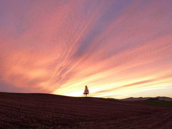 窓から見える夕焼けも素晴らしい・・・