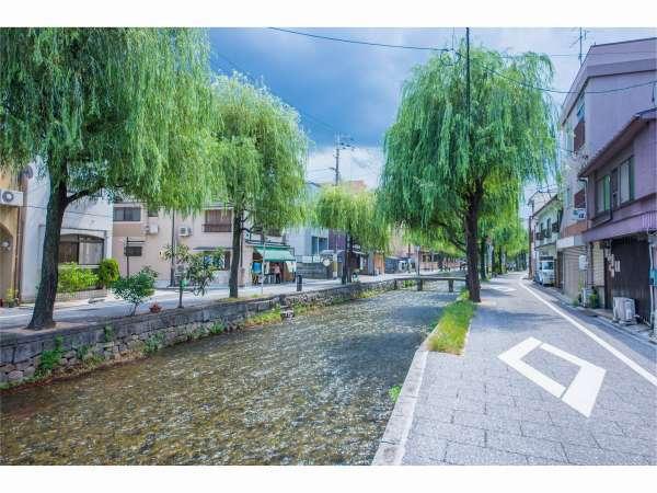 白川沿いを歩いて祇園方面へ。おすすめのお散歩コースです!