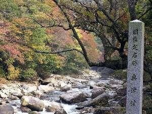 奥津渓(宿より3K) さわやか自然百景で紹介されました