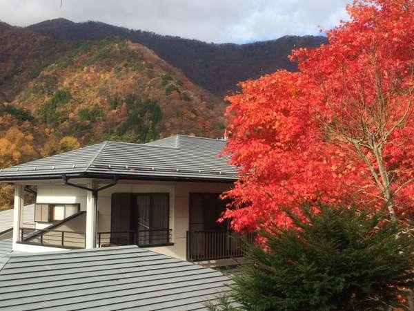 宿の周りの紅葉