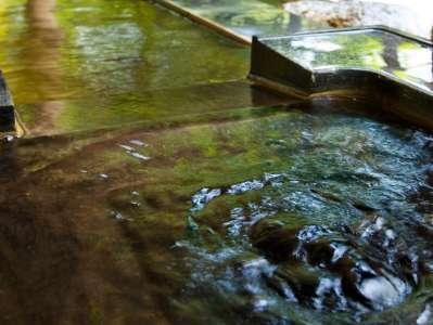 【雫石高倉温泉(夏)】錦鯉が泳ぐ池と隣接している露天風呂