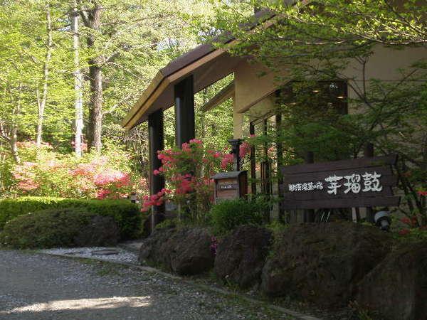 芽瑠鼓玄関前にもたくさんのツツジが咲きます