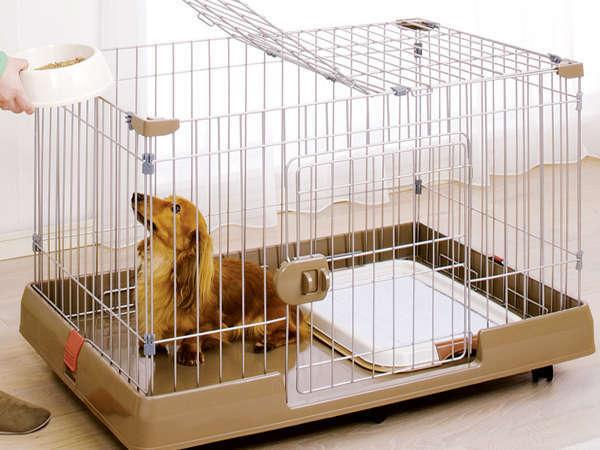 ペットとの宿泊が出来る宿【※ペット同伴宿泊プラン参照】