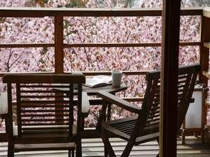 デッキに出れば、春の支笏湖の風を全身に感じることができます