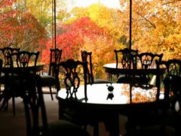 秋はロビーから赤や黄に色づく美しい紅葉が眺められます。