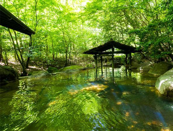 【旅館 山河】四季折々で表情を変える雑木林の中に佇む温泉宿
