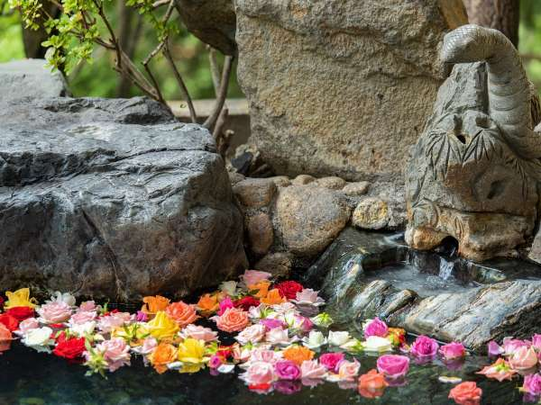 【老神温泉 穴原湯 東秀館】庭園が自慢の純和風旅館。皮膚炎に効く掛け流しの温泉を満喫!