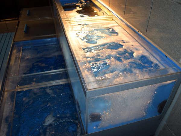 当館一押しの活鮑や季節によっては活松葉蟹も入る生簀です。