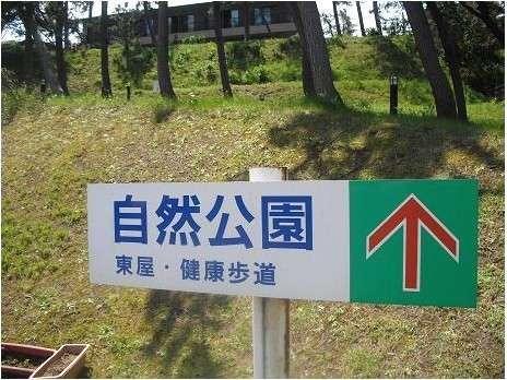 当館目の前の自然公園にてお散歩♪