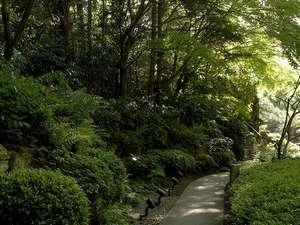 四季折々の表情が楽しめる日本庭園