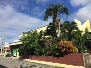 黄色い外観と庭の椰子の木が目印、港から2軒目。1軒目は、大原駐在所。