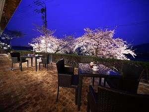テラスより夜桜!3月下旬より4月上旬