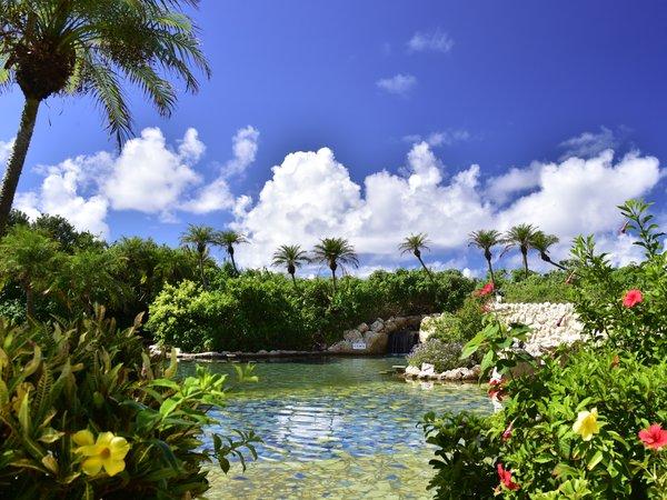 【シギラ黄金温泉(リゾート内)/ジャングルプール】水着で入るジャングルプールです。
