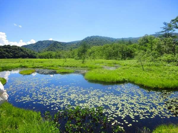 【尾瀬】尾瀬沼は一周約8kmあります