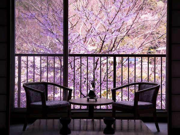 【客室からの眺め】春には、川辺に咲きほこる桜に心癒されて・・・