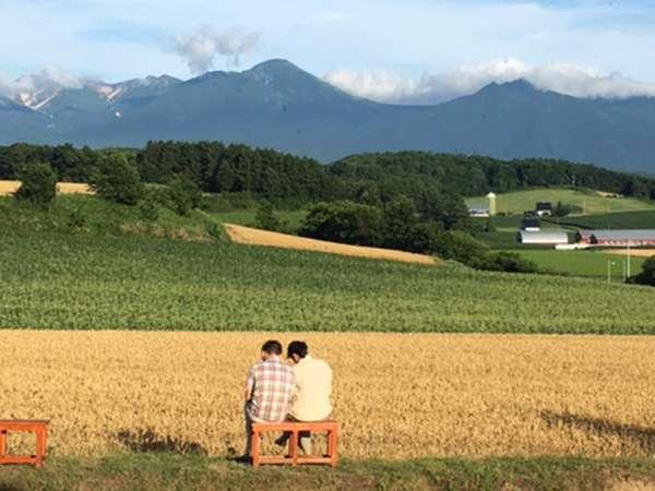 *夏の風景/お気に入りの一杯を持ってベンチでのんびり。時間を忘れさせてくれる絶景とはこのこと。