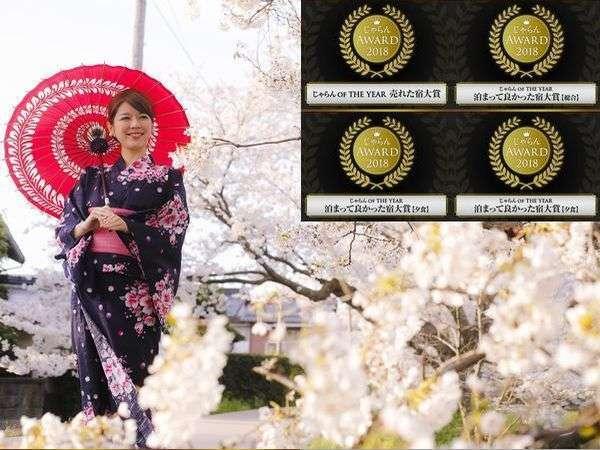 【玉造温泉の桜】温泉街の川沿いにあるソメイヨシノの桜。夜にはライトアップされ夜桜も♪4月1日時点:満開