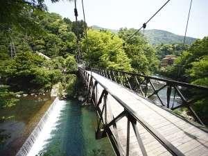 【四季を味わう宿山の茶屋】早川に掛かる吊橋の奥 竹林の中に佇む隠れ家的な宿