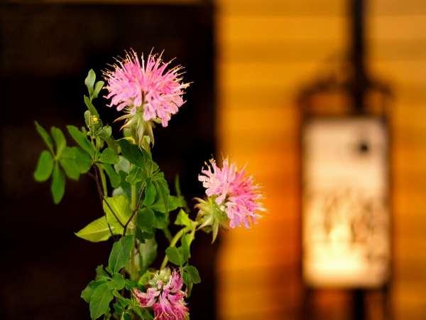 女将の野摘み花 japanese flowers