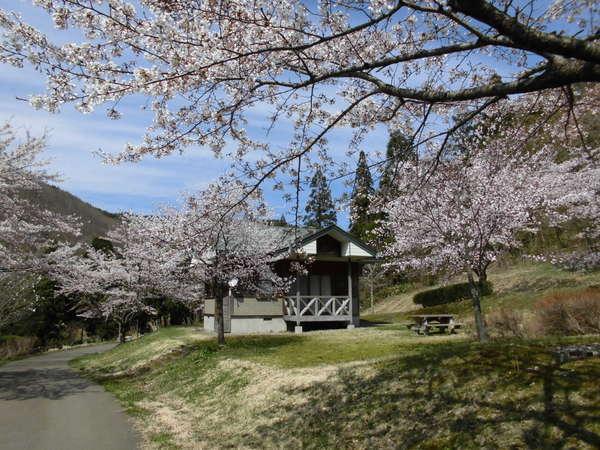 桜や新緑を眺めながら、コテージで皆と楽しいひと時を。