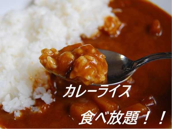 夕食◇◆カレーライス◆◇