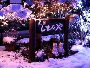 冬の夜は木に積もった雪に電飾の光が映えてキレイ!