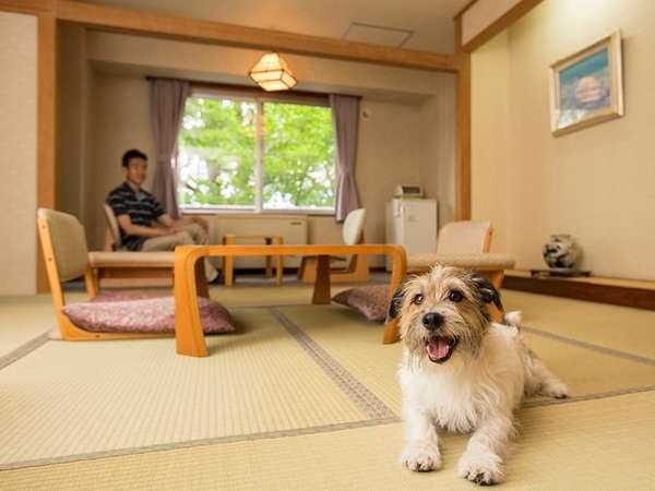大江本家ではワンちゃんと一緒に泊まれるお部屋をご用意