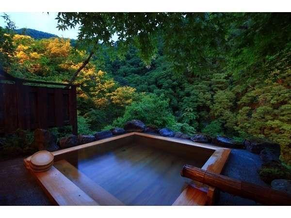 【渓流の宿 渓山】【貸切無料♪】眺望絶景の露天を源泉かけ流しで愉しむ♪♪