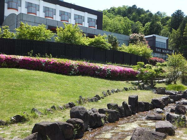 里山の自然と温泉を楽しめる宿 高原ロッジ メープル猪名川