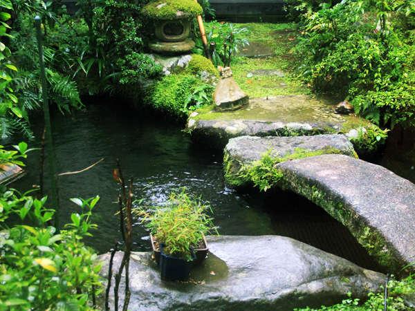 *~中庭の緑と光~移ろい行く風景の中、寛ぎのひとときを。。