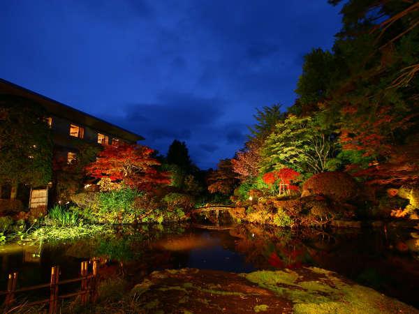 ■【庭園】夜のライトアップで一層美しい日本庭園