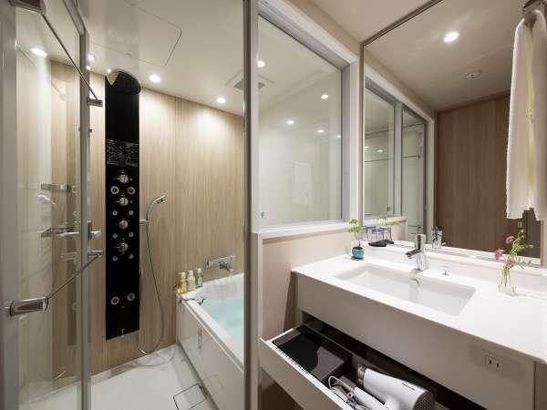 バスルーム(多機能シャワー・バスタブ付き)