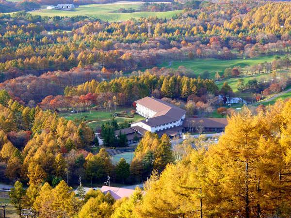 紅葉に囲まれ、10月19日~11月4日まで期間限定・紅葉リフト運行!雄大な山々と黄金色に染まる景色を!