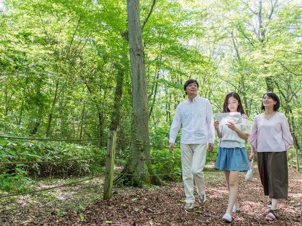 *【庭園(一例)】みんなで森の中を探検!