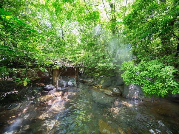 【露天風呂/男湯】緑いっぱいの露天風呂では四季の移ろいをもお愉しみいただけます