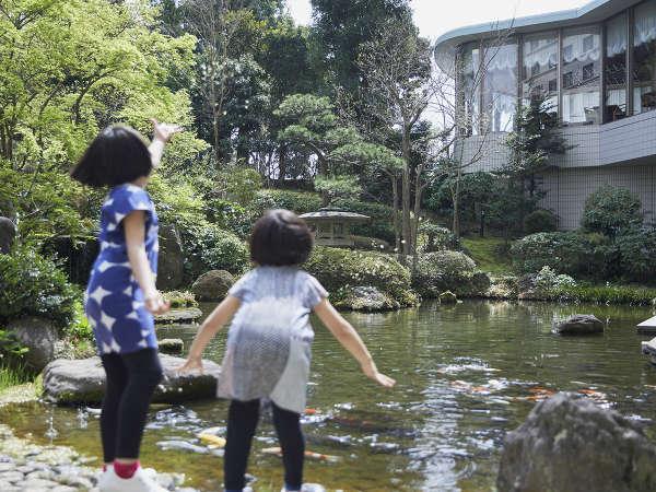 チェックイン後にはファミリーで日本庭園の散策も