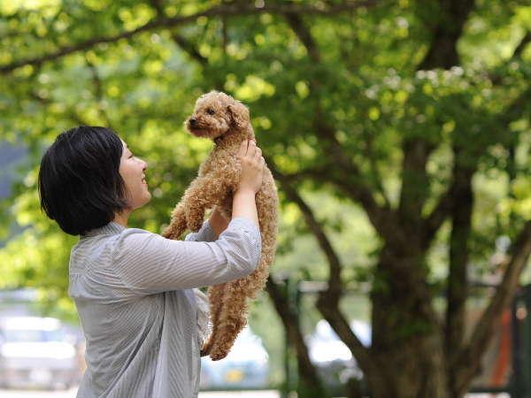 【松阪わんわんパラダイス 森のホテルスメール】愛犬と泊まれる温泉リゾートホテル
