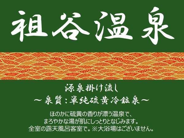 美人の湯【祖谷温泉】