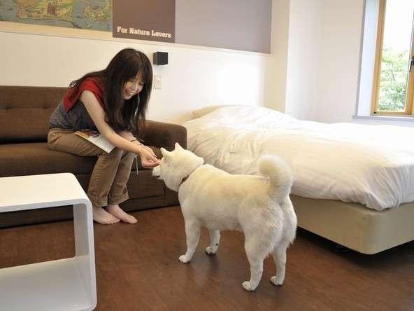 トゥラノ館/別棟のトゥラノ館はワンちゃん同伴OK!(有料)愛犬と寛ぎの旅をお楽しみ下さい。
